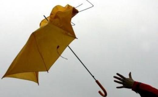 Precauciones con viento fuerte